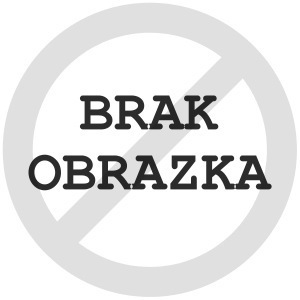 Roots Rockets
